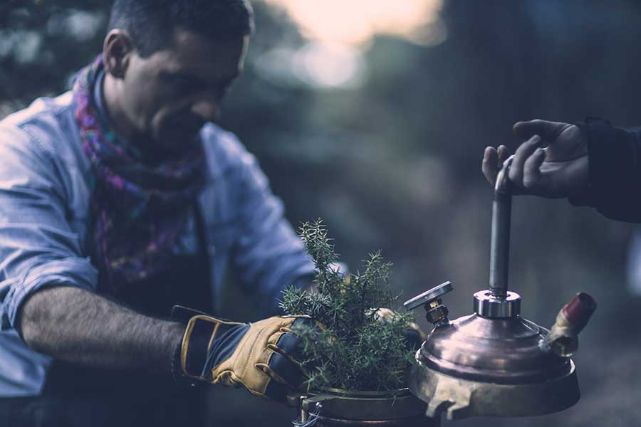 Harvesting Of Wild Herbs And Outdoor Distillations And Extractions