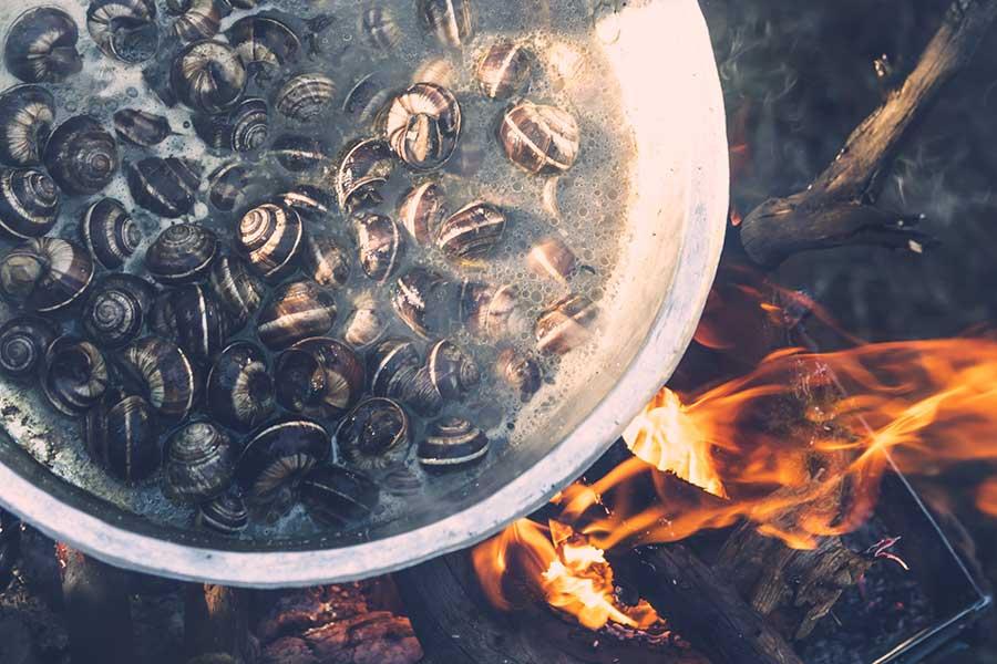 Συλλογή άγριας τροφής και μαγειρική σε υπαίθρια φωτιά